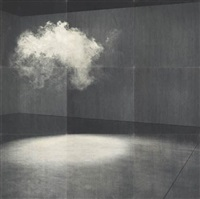 cloud (9 works) by lorna simpson