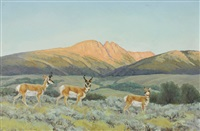 antelope in chamisa by bill freeman
