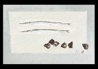 halfbeak and shell by tamotsu yoshida