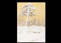 snow on the pine tree by shinichiro kitazawa