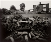 emmett's arm by sally mann