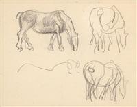 cavalos by eduardo viana