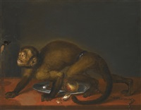 a monkey with a winged beetle on a string by frans snyders