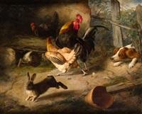 corral con conejos y spaniel by federico gimenez