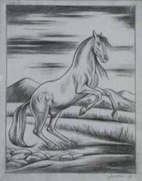 cavallo by gregorio sciltian