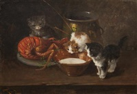 kittens with lobster by f. krantz