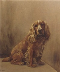 a caramel cocker spaniel by ita rennie