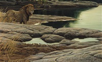 lion at tsavo by robert mclellan bateman