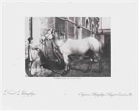 homme présentant un cheval by louis désiré blanquart-evrard