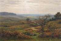 near burley in the new forest by frederick golden short