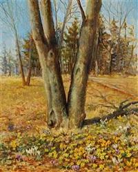 blomstrende krokus i en skovbund by olga aleksandrovna (princess of storfyrstinde)