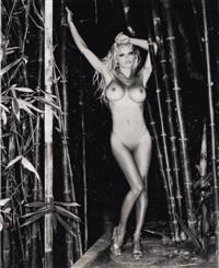bamboo nude #1 by sante d'orazio