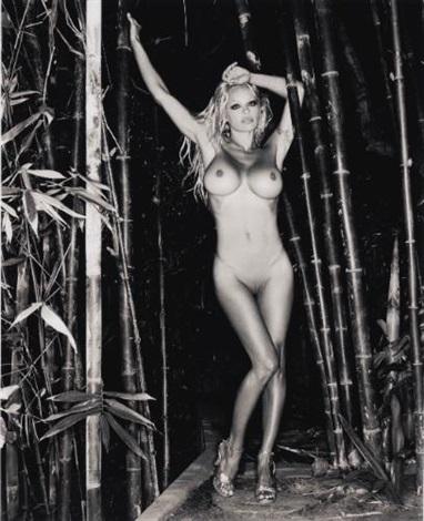 bamboo nude 1 by sante dorazio