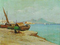 a view of the bay of naples by carlo ciappa