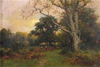 a new forest glade by frederick golden short
