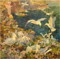 herring gulls nesting by charles walter simpson