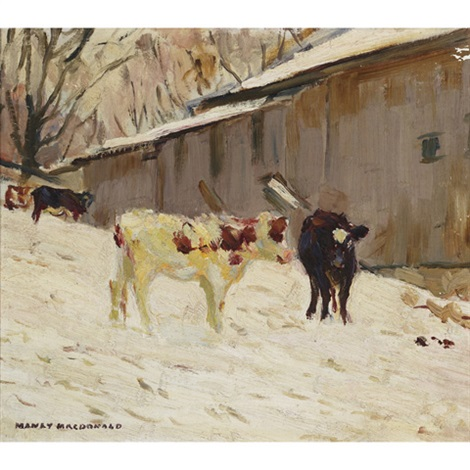 calves in the snow by manly edward macdonald