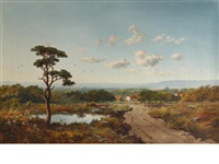 woking common going towards purford by edmund john niemann