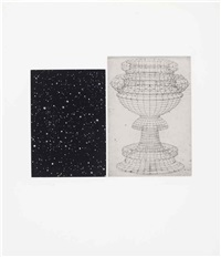 constellation - uccello by vija celmins
