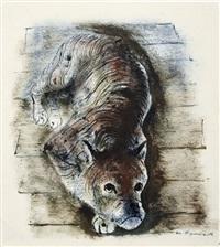 dogge by josef hegenbarth