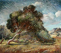 wind blown landscape by maximilian vanka