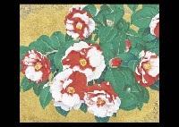 iwane camellias by nobuyoshi aoyama