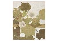 cotton rose by hiroshi iwasaki