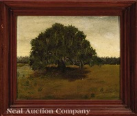live oak tree by american school-louisiana (20)