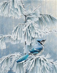 frosty morn blue jay by robert mclellan bateman