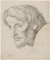testa maschile by johann friedrich overbeck