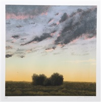 two bushes at twilight by john beerman