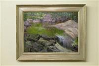 falling water by henry ryan macginnis