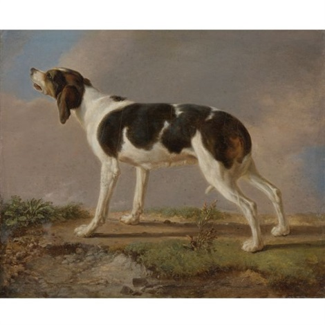 a hunting dog by jacques laurent agasse