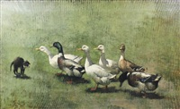 ducks and cat by horace mann livens