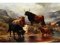 schottische hochlandrinder mit kälbern am bach by r. watson