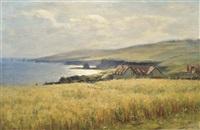 sunlight on the coast by duncan cameron