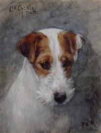 wire fox terrier ch. cackler of notts by frances c. fairman