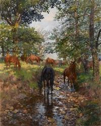 pferde im mauerpark der sababurg by theodor rocholl