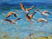 flamingoes by zakkie (zacharias) eloff