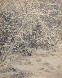 snow covered branches by william b. post