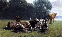 kühe auf der weide by richard voltz