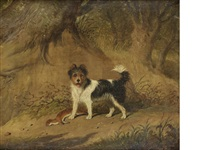 a terrier in a wood by martin theodore ward