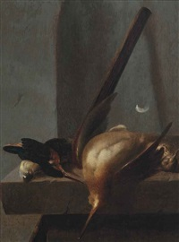 a woodcock, a kingfisher, a thrush and a greattit on a stone ledge by jan vonck