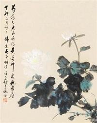 白牡丹 by xu zihe