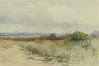 a tonal landscape by elmer wachtel
