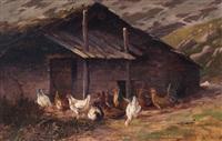 pollaio all'aperto by leonardo roda