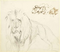 study of a lion by sir edwin henry landseer