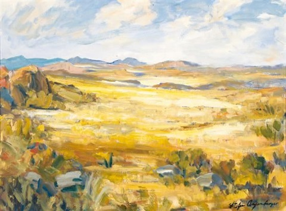 a verdant landscape by stefan ampenberger