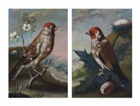 a finch in a landscape (+ a finch on a thistle in a landscape; pair) by johann adalbert angermayer