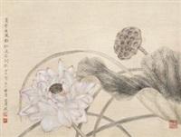 荷塘秀色 by jiang hongwei